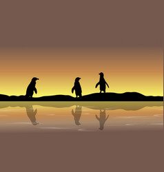 Collection penguin scenery silhouettes vector