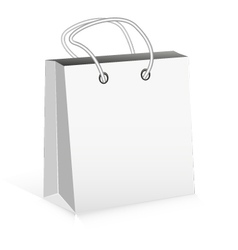 White Package vector image vector image