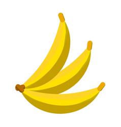 Delicius bananas fruit vector