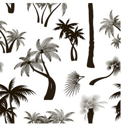 Palm collection pattern vector