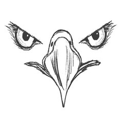 eyes of eagle vector image