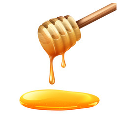 Honey Stick vector image