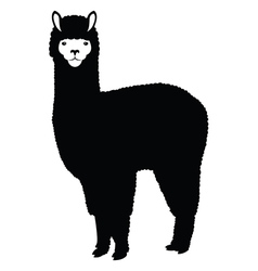 Lama silhouette vector