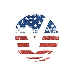 Voting mark American lag background Vote grunge vector image