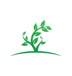Tree leaf ecology logo image vector