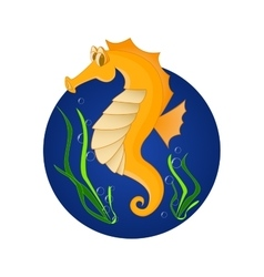 Funny sea horse cartoon character vector
