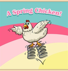 Idiom saying spring chicken vector