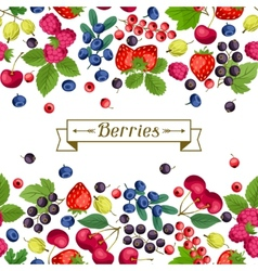 Seamless nature pattern with berries vector
