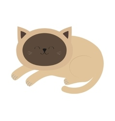 Lying sleeping siamese cat in flat design style vector