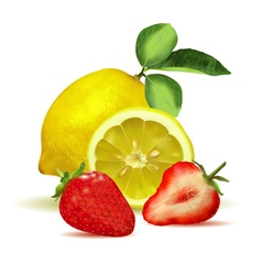 Fresh lemon with leaves and strawberry vector image