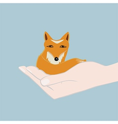 Cute little fox cupped in a hand vector image