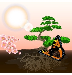spring background bonsai and cherry vector image