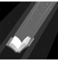 Book is Light vector image vector image