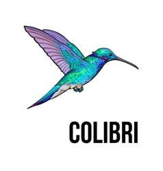 Hand drawn sapphire hummingbird colorful sketch vector image