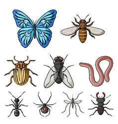 insects set icons in cartoon style big collection vector image