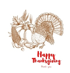 Thanksgiving holiday turkey symbol skech element vector image