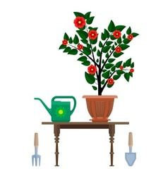 Flowerpot in pot watering can vector