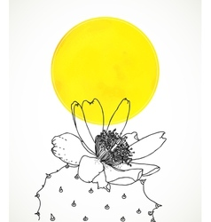 Ard with botanical drawing of cactus flower vector