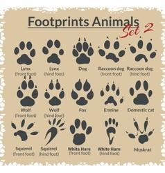 Footprints animals - set vector
