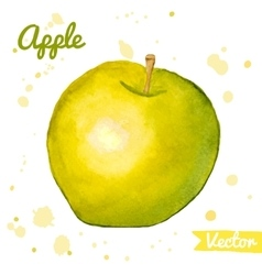 Green and yellow abstract watercolor apple vector