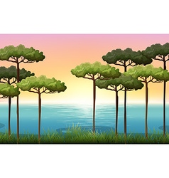 Nature scene with trees and water vector image vector image