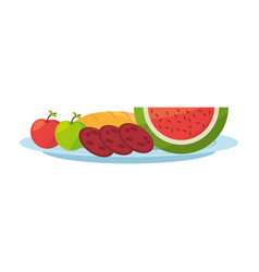 Watermelon delicious fruit vector