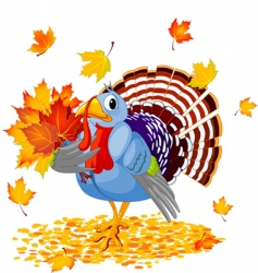 cartoon turkey with autumn bouquet vector image vector image