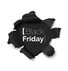 Black friday hole in paper banner vector