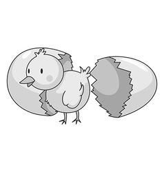 Little chick coming out of eggshell vector