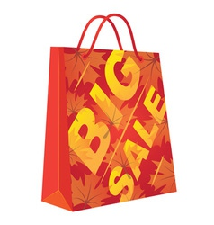 Autumn Big Sale vector image vector image