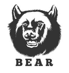 roaring bear emblem vector image vector image