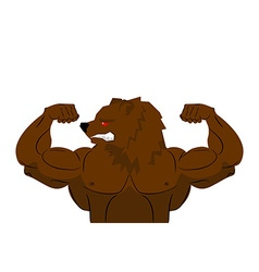 Aggressive strong bear bear athlete angry animal vector