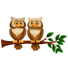 Cartoon couple owl on a branch vector image
