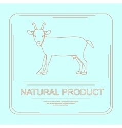 Logotype of natural product vector
