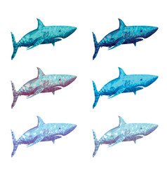 polygonal shark in six colour vector image vector image