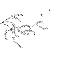 Branch of willow and birds isolated on white backg vector