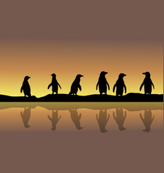 Landscape of penguin silhouette at sunset vector
