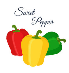cartoon flat bell peppers - red green yellow vector image