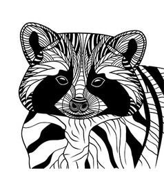 Racoon or coon head animal vector image