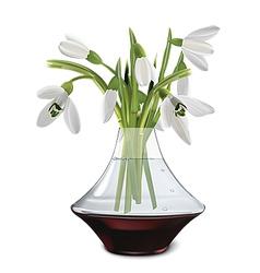 Snowdrops in a vase vector