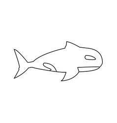 orca whale wildlife marine aquatic vector image