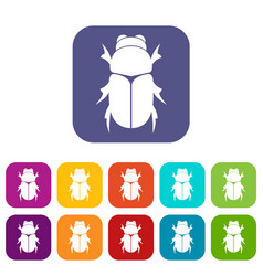 Chafer beetle icons set vector