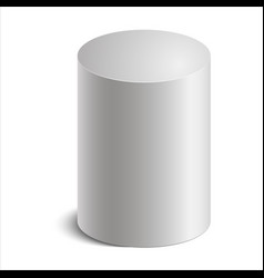 cylinder vector image vector image
