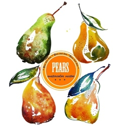 Set of different ripe pears watercolor sketch vector