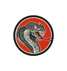 Cobra viper snake circle retro vector