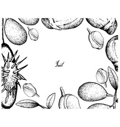 Hand drawn frame of ambarella and red mombin fruit vector
