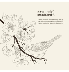 Hand drawn bird on sacura branch vector