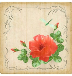 Vintage flower dragonfly retro card border frame vector
