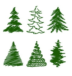 Green spruces vector