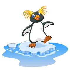 Happy cartoon penguin rockhopper on ice vector